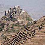 14-Остров Сокотра. Йемен