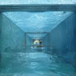 akvapark-aquaventure4 (Копировать)
