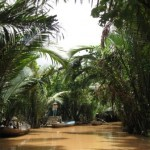 Mangrovyj kanal, Mekong