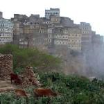 13-Пезажи острова Сокотра. Йемен