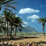 8-Пейзажи острова Сокотра. Йемен