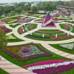 park-tsvetov-al-ain-paradise-v-oae (Копировать)
