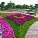 park-tsvetov-al-ain-paradise-v-oae4 (Копировать)